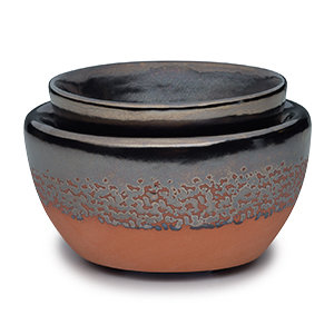 Zuni Scentsy Element Warmer
