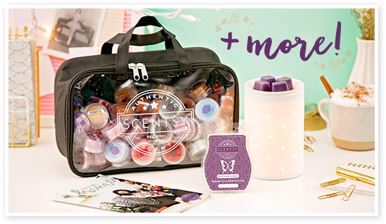 Half price Scentsy Starter Kit