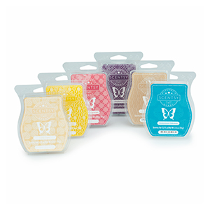Scentsy 6-pack Bar Bundle