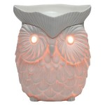Whoot new owl Scentsy Warmer Premium