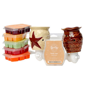 Plug in Scentsy Warmer Discount