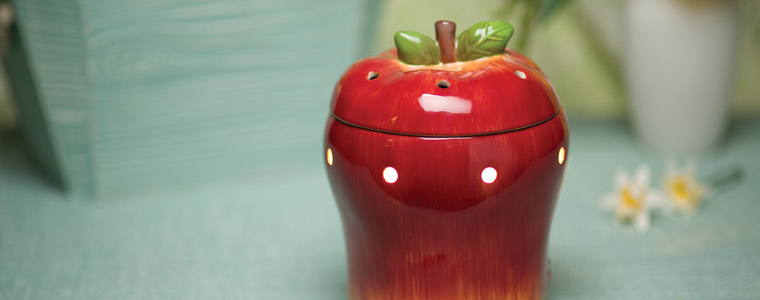 Scentsy Warmer of the Month Big Apple