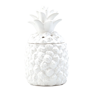 Scentsy Warmer southern hospitality buy online