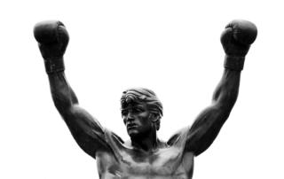 Scentsy Rocky winner Buy Online